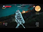 V�deo: The Witcher 3: C�mo matar a Imlerith