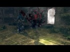 Vdeo: Artorias vs Manus (Round 3 - No HUD)