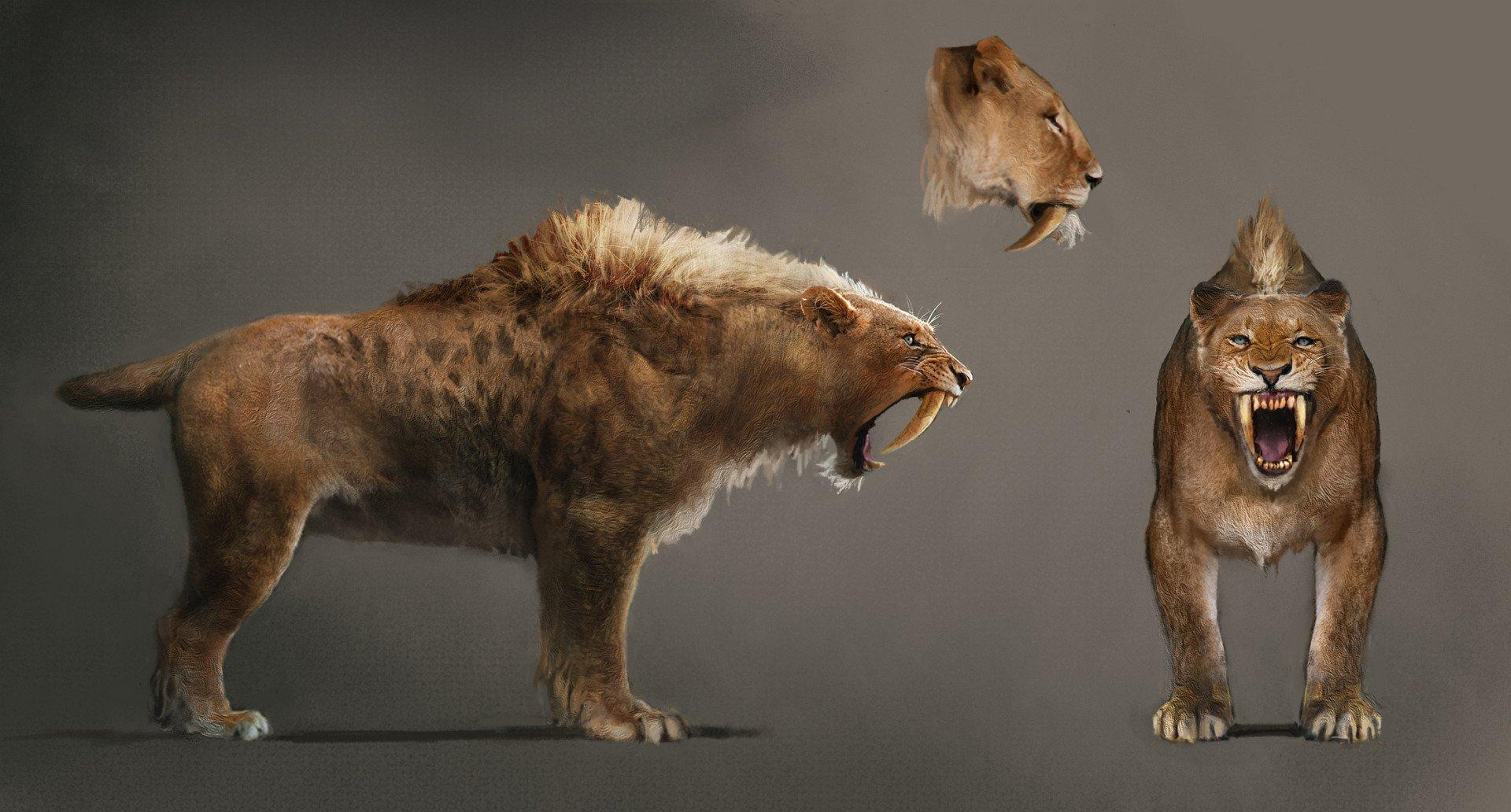 Ubisoft anticipa el anuncio de una aventura de supervivencia en un mundo prehistórico Far_cry_primal-3208370