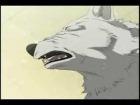 Video: Into The Night ~ Wolf's Rain AMV